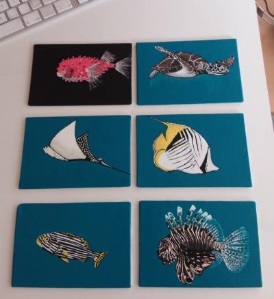 colección de peces pintados por glungu sobre lienzos técnica mixta